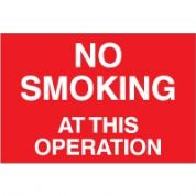 No Smoking safety sign - No Smoking at This 009